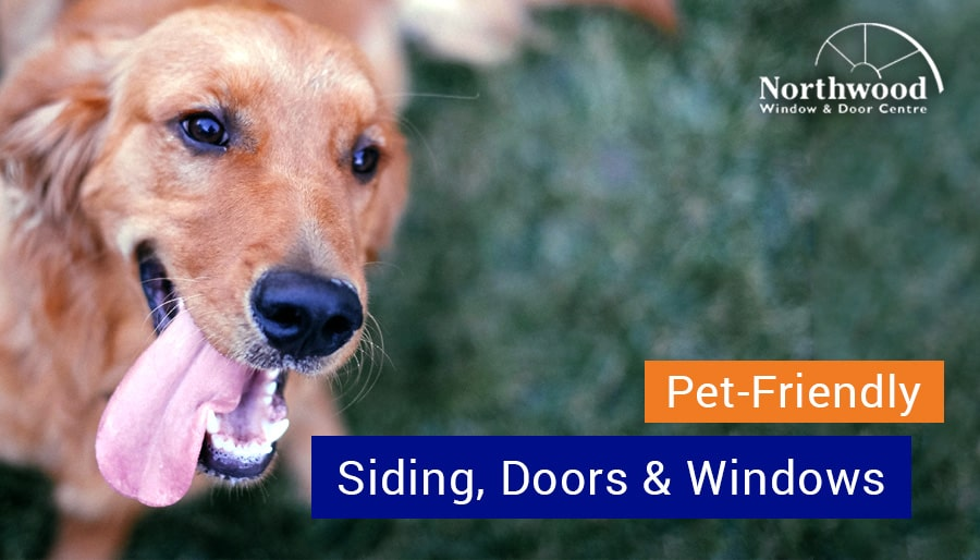 Choosing Pet-Friendly Siding, Doors & Windows